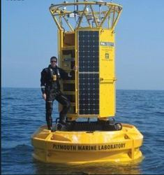 Irm Offshore & Marine Engineers Private Limited