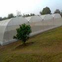 Hdpe Agro White Shade Net, Length: 50 Meter