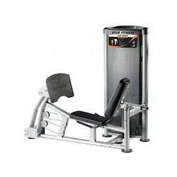Leg Calf / Press Machine