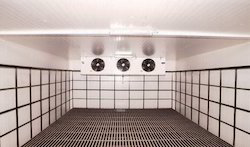 Cold Storage Rental