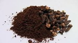 Clove Extract Powder