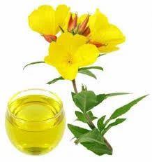 Oenothera Biennis Oil