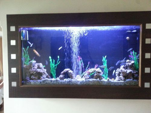 wall mounted fish tank fully automatic at rs 150000 piece. Black Bedroom Furniture Sets. Home Design Ideas