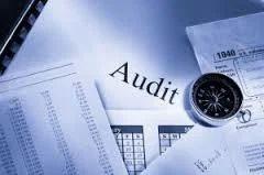 Stock Audit