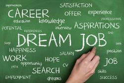 Job Consultant Especially Of Computer Operational Related