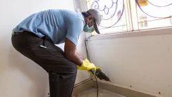 Post Construction Termite Pest Control Service