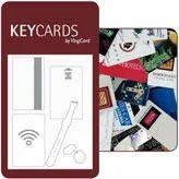 Ving Card Key Cards, Biometrics & Access Control Devices   Key Card