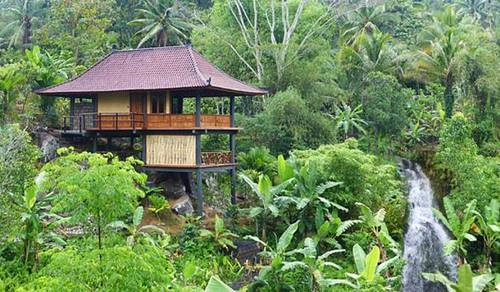 Resort Construction Cost In India Tree House Resort Oem