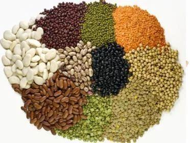 Organic Pulses, Organic Lentils, ऑर्गेनिक दालें, ऑर्गेनिक पल्सेस in Mumbai  , Mishtiship Agencies | ID: 10941746012