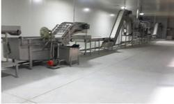 Green Pea Processing Machinery