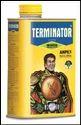 Terminator Structure for Anti Termite Treatment Foundation