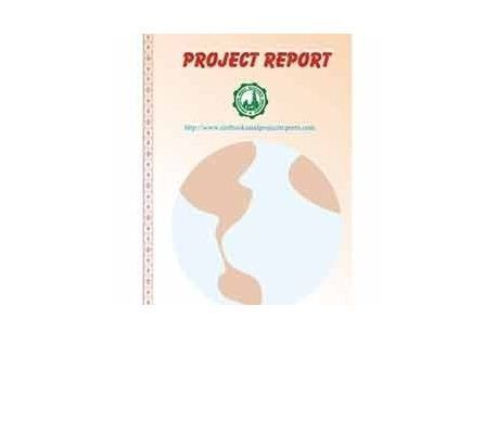 Ceramic & Glass Industry Project Report - Ceramics and