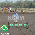 Row Drum Seeder