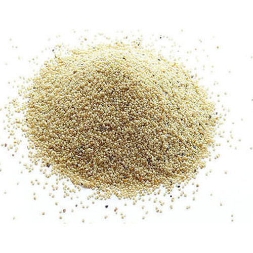 Khas Khas/ Poppy Seeds