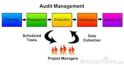 Lifetime Consulting Firm Management Audit, Type Of Industry Business: Company, Jaipur