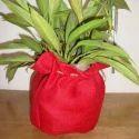 Jute Grow Bags