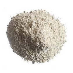 4 kg Garlic Powder, Packaging: Packet