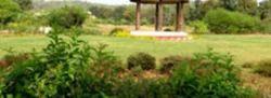 Extensive Garden Design