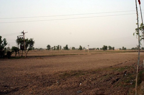 Agriculture Land Sale
