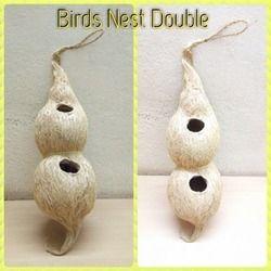 Birds Double Nest