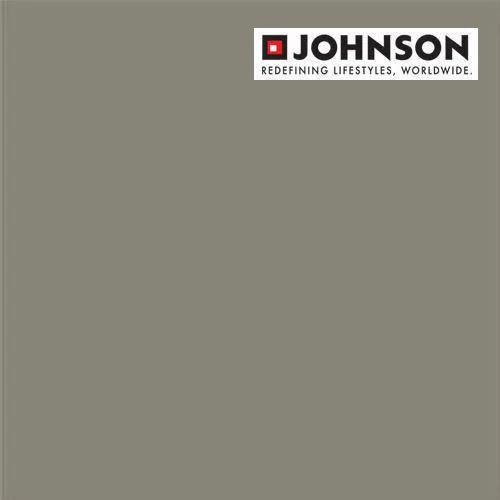 Johnson Porcelain Vitrified Industrial Floor Tiles