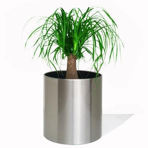 Round Stainless Steel Plant Pot Size 10 15 Inch Rs 2500