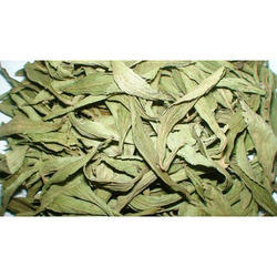 Dry Stevia Leaves