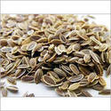 Dill Seed Testing Services
