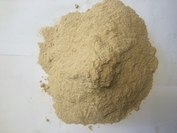 White Wood Powder