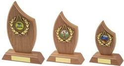 Wooden Trophies for Colleges Function
