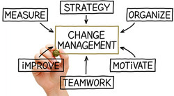 Professional Change Management Consultancy, Location: Pan India