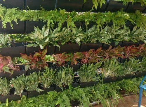 Vertical garden bio wall