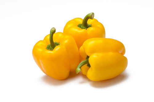 Yellow Organic Capsicum Seeds, Packaging: 50 g - 1 kg