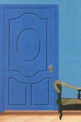 Modern Safety Door