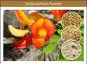 Organic Sesbania Gum Powder