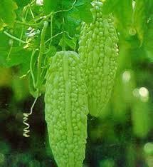 Momordica Extract (Momordica Charantia)