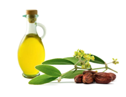 Jojoba Oil (Colorless)