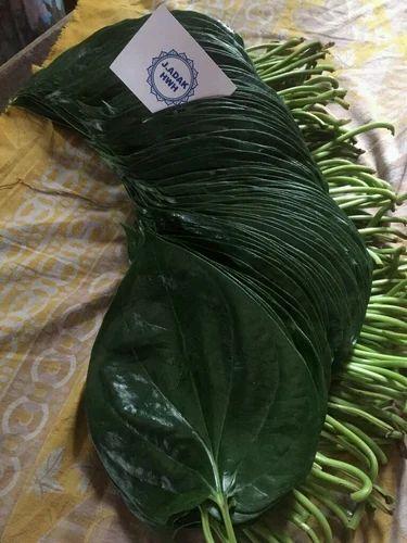 Sweet Green Betel Leaves