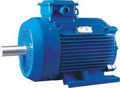 Heavy Duty Three Phase Motor