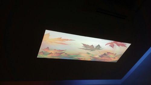 Luxceil Stretch Ceiling