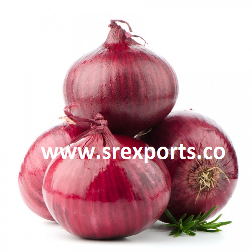 High Quality Onion - View Specifications & Details of Red Onion by