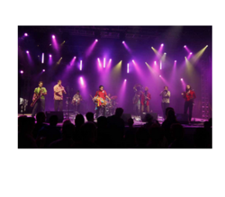 Live Musical Concerts