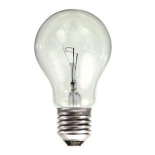 100 Watt Gls Bulb