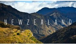 Study In New Zealand Service