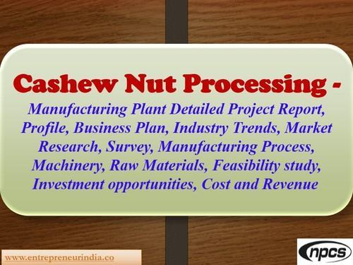 Cashew Nut Processing Project Report In Kamla Nagar New Delhi Niir