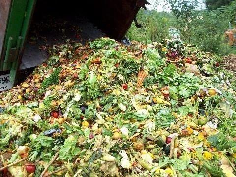 Organic Waste Treatment Kitchen Waste Management Service