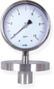 Pressure Gauge With Extended Flange And Extended Sealed Unit