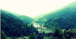 Camping And Angling Tour In Barot Valley