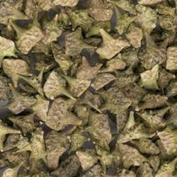 Tribulus Terrestris Extract, Packaging Type: Polybag, Pack Size: 5 Kg