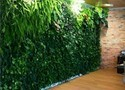 Hyperboles Beautiful Artificial Vertical Wall